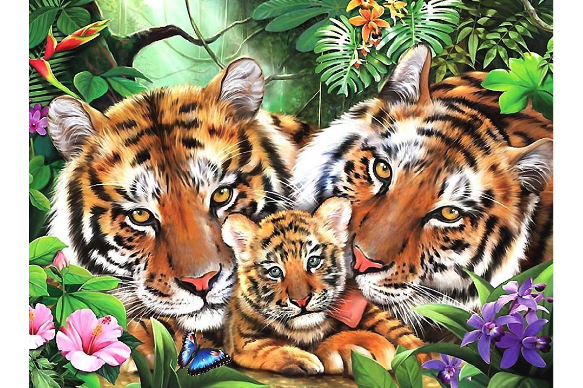 семья тигров 3