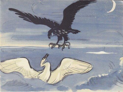Лебедь и коршун 24