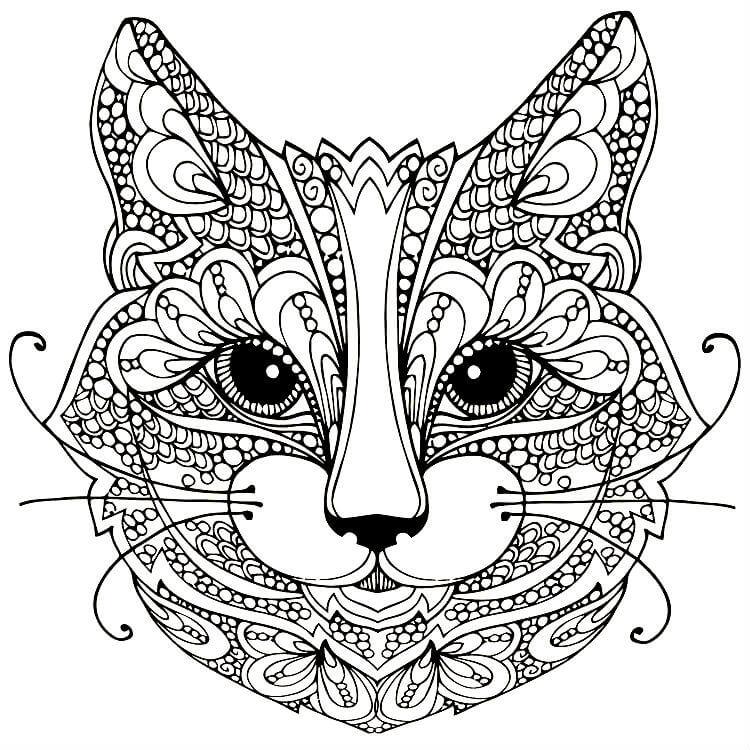 мордочка котёнка 46