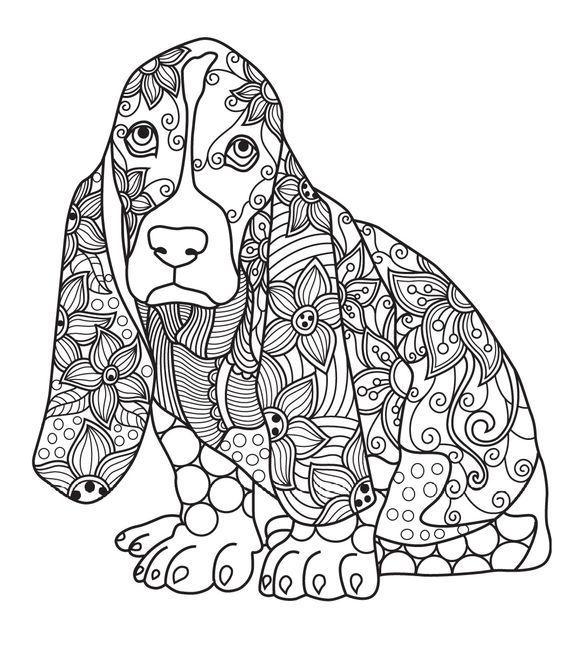 Раскраски для девочек животные | andrey-eltsov.ru
