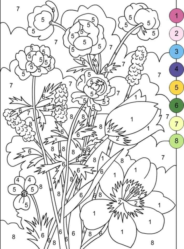 раскраска по номерам цветы 14