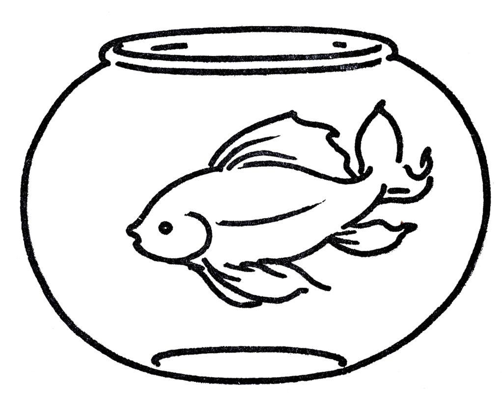 шаблон аквариума 72