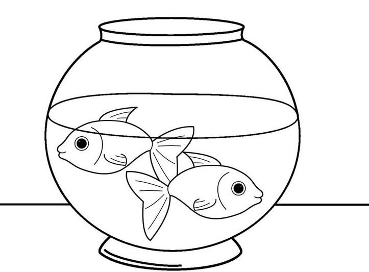 шаблон аквариума 20