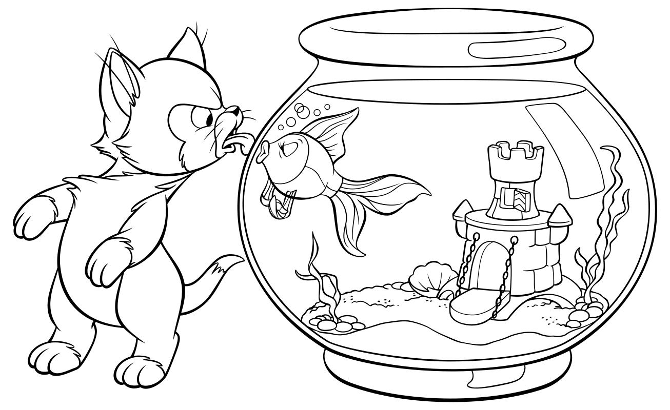 Кот облизывается рисунок