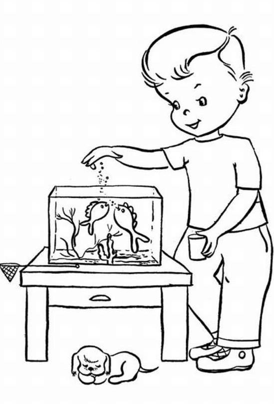 мальчик кормит рыбок рисунок