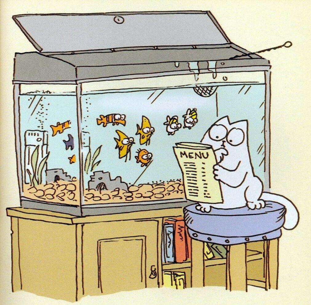 Кот Саймон рисунок