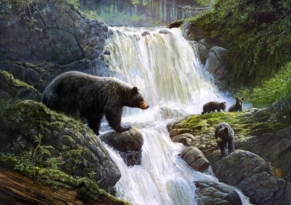 Медведь и медвежата 41