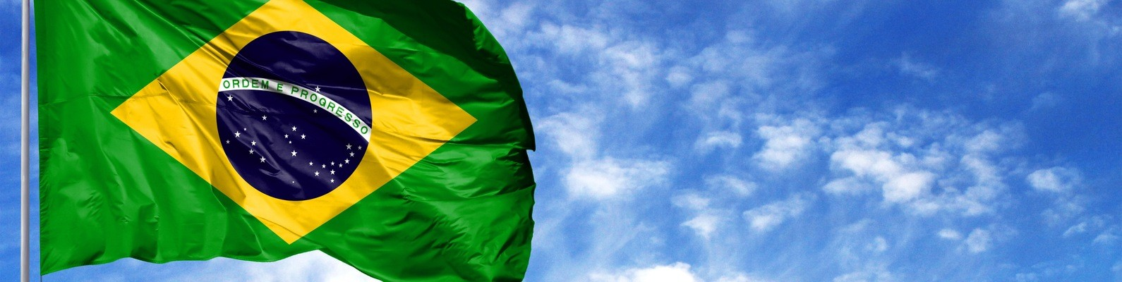 Флаг Бразилии 14
