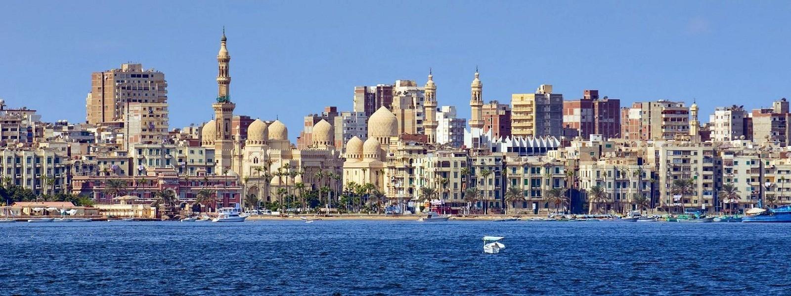 Александрия фото 26