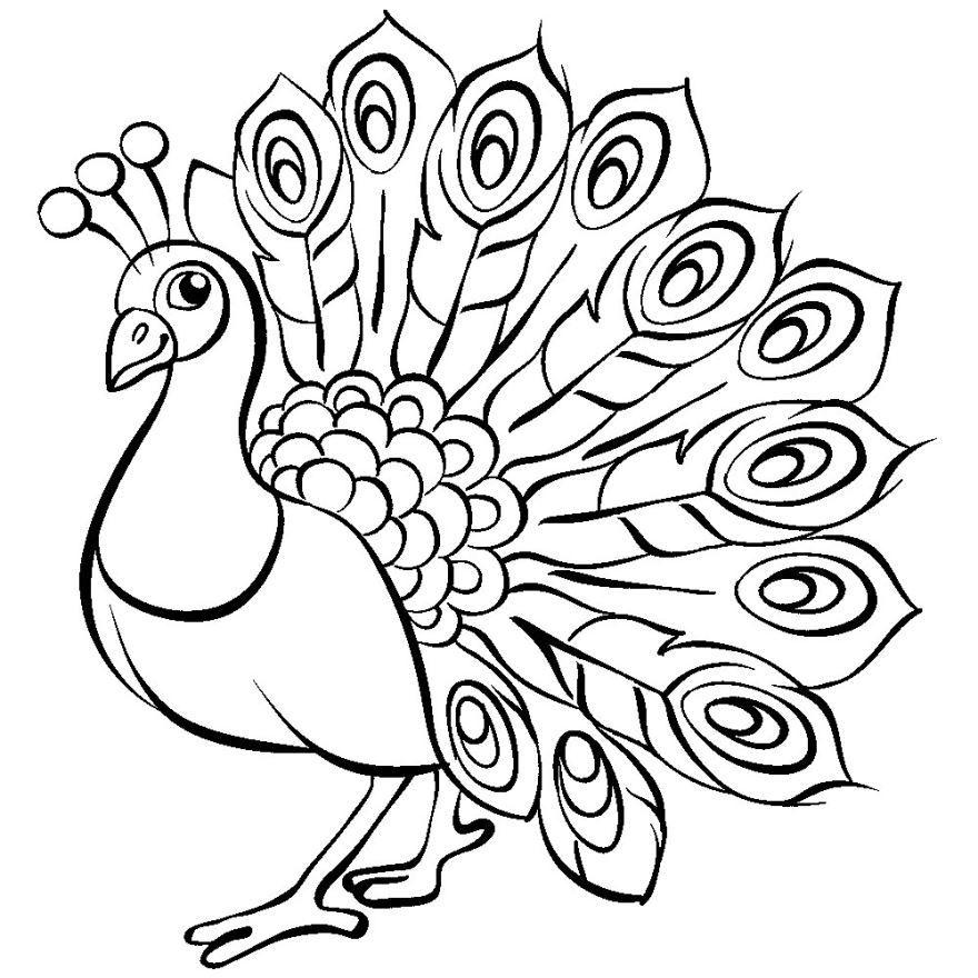 Раскраска павлин 144