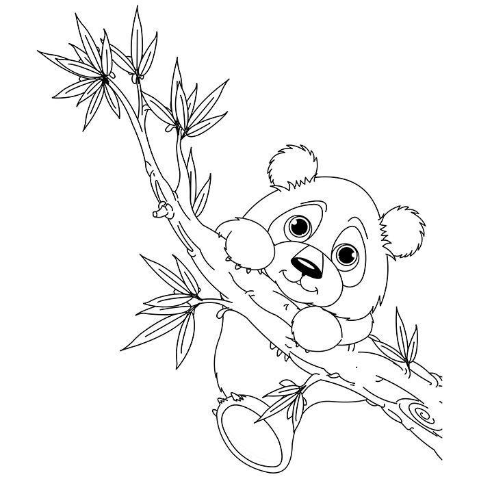 Раскраска Панда 27