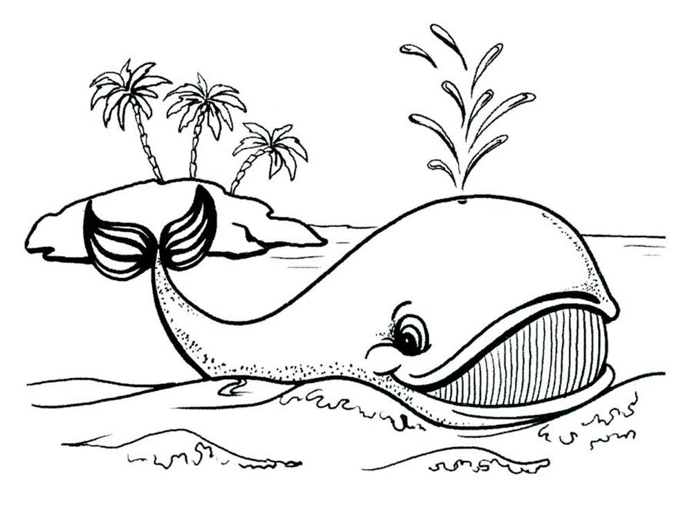 Раскраска кит 440