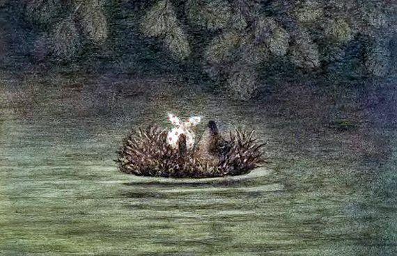 Ёжик на реке
