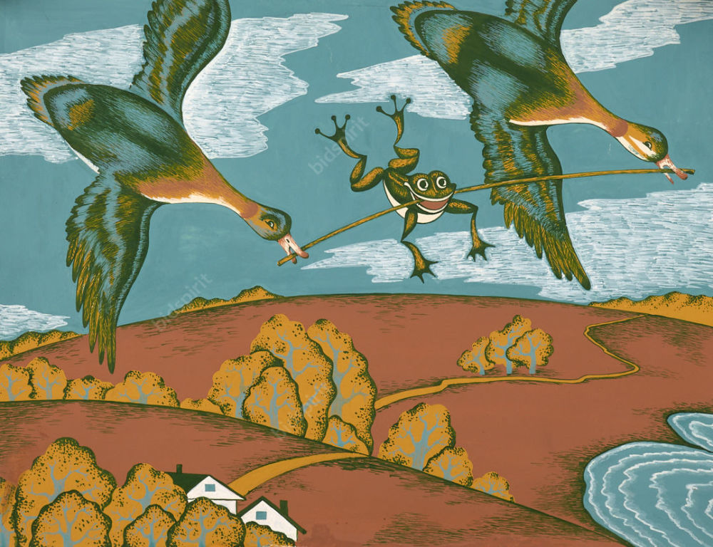 Картинка лягушка 14